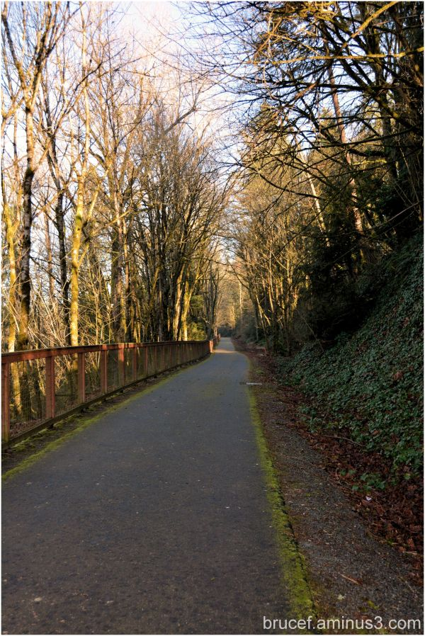 A nice path for a walk