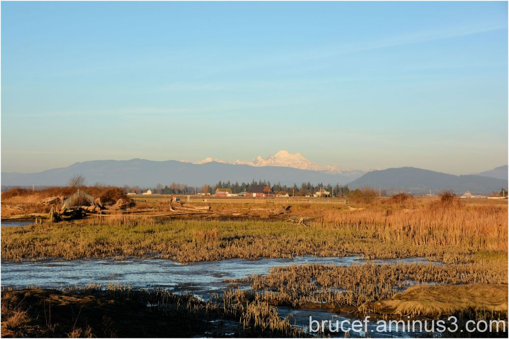 The Skagit Estuary to the Mountains