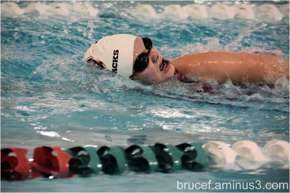 Favorite Swimmer