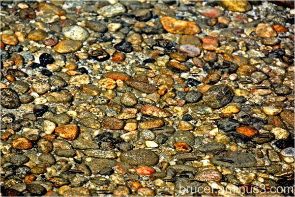 Pebbles and fish