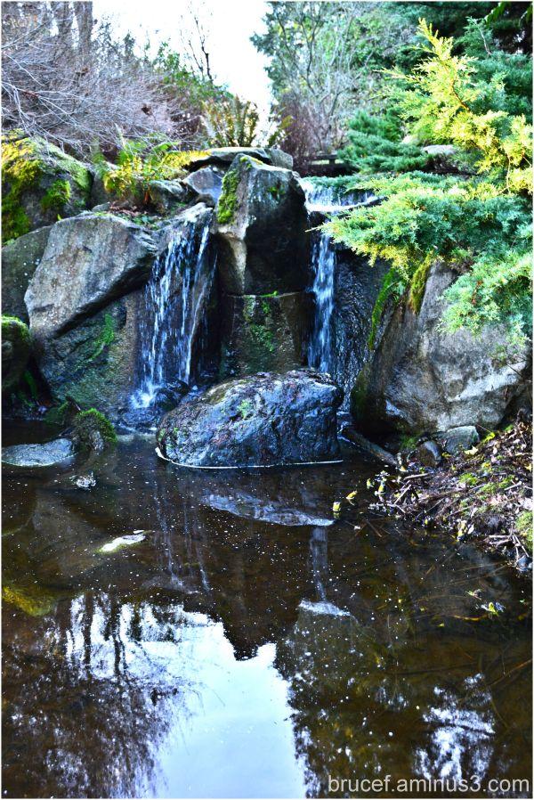 Waterfall Bellevue Botanical Gardens