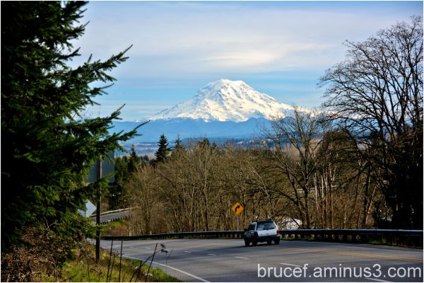 View of the Mt Rainier in the Spring