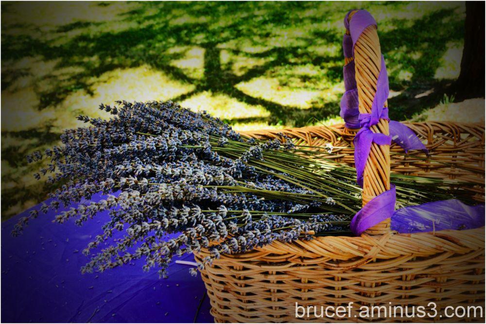 Basket of great smells