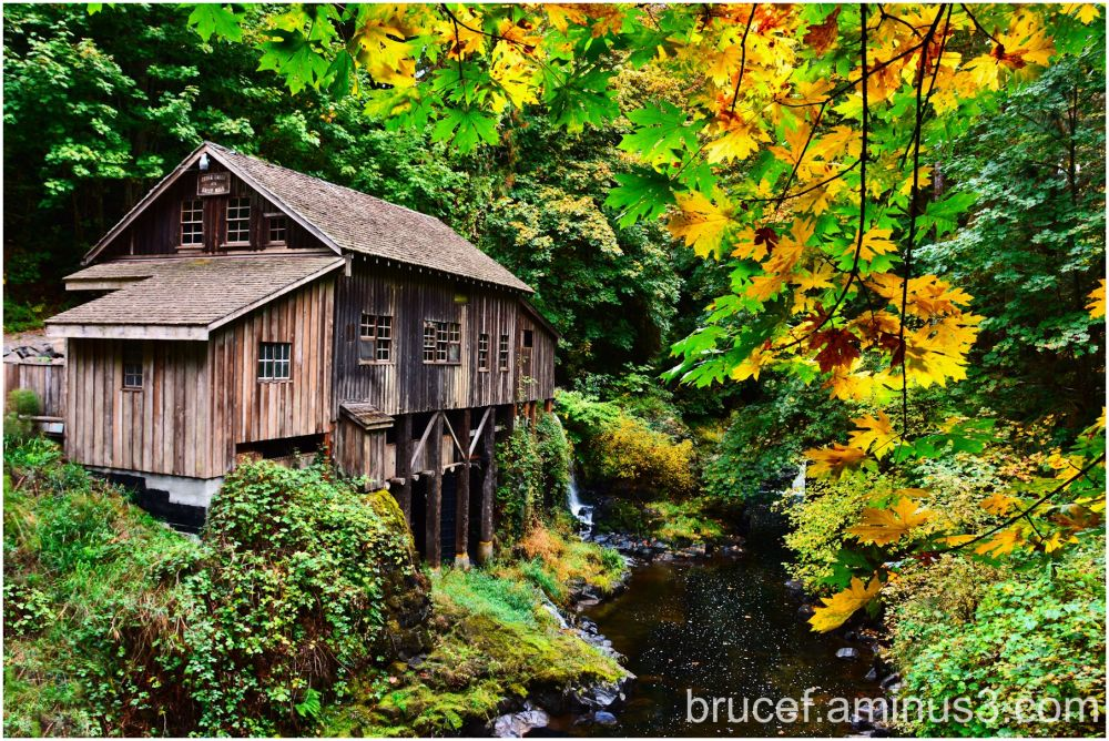 Grist Mill Hidden in the Woods