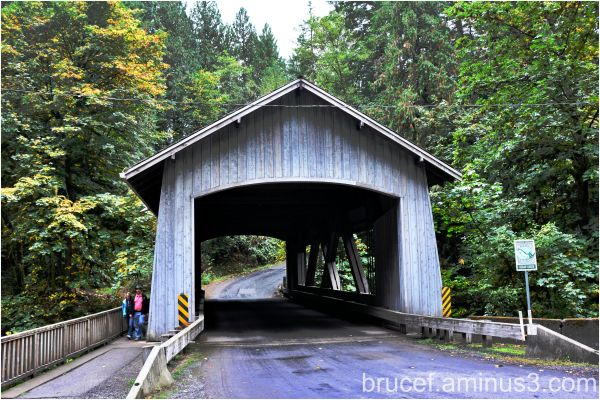 Wooden Bridge Woodland WA