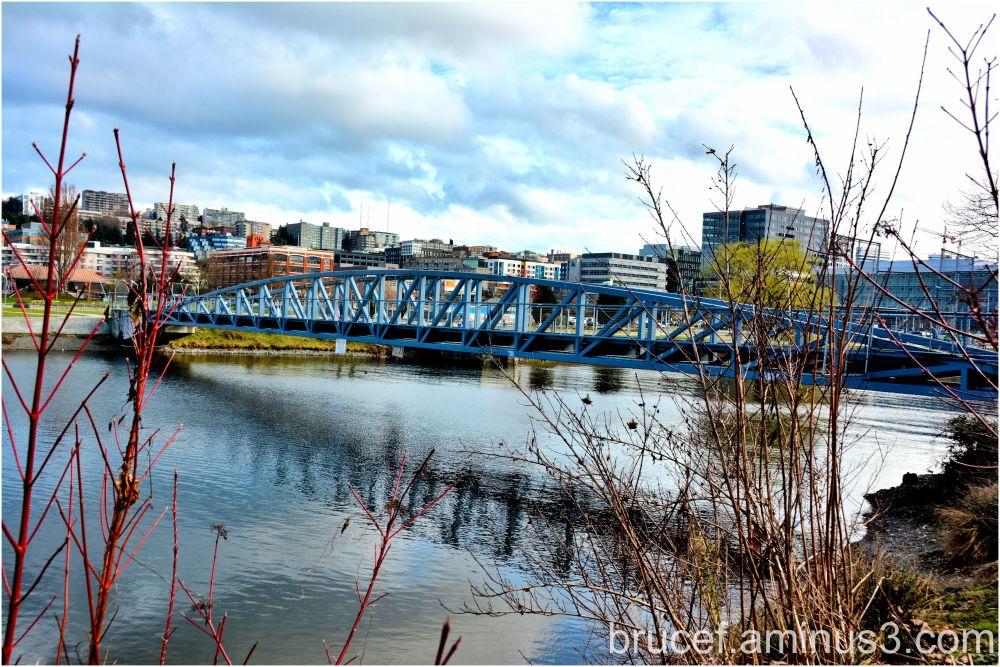 Bridge in Seattle