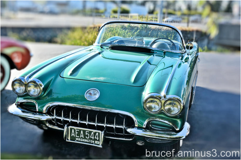 Corvette emjoying the summer evening