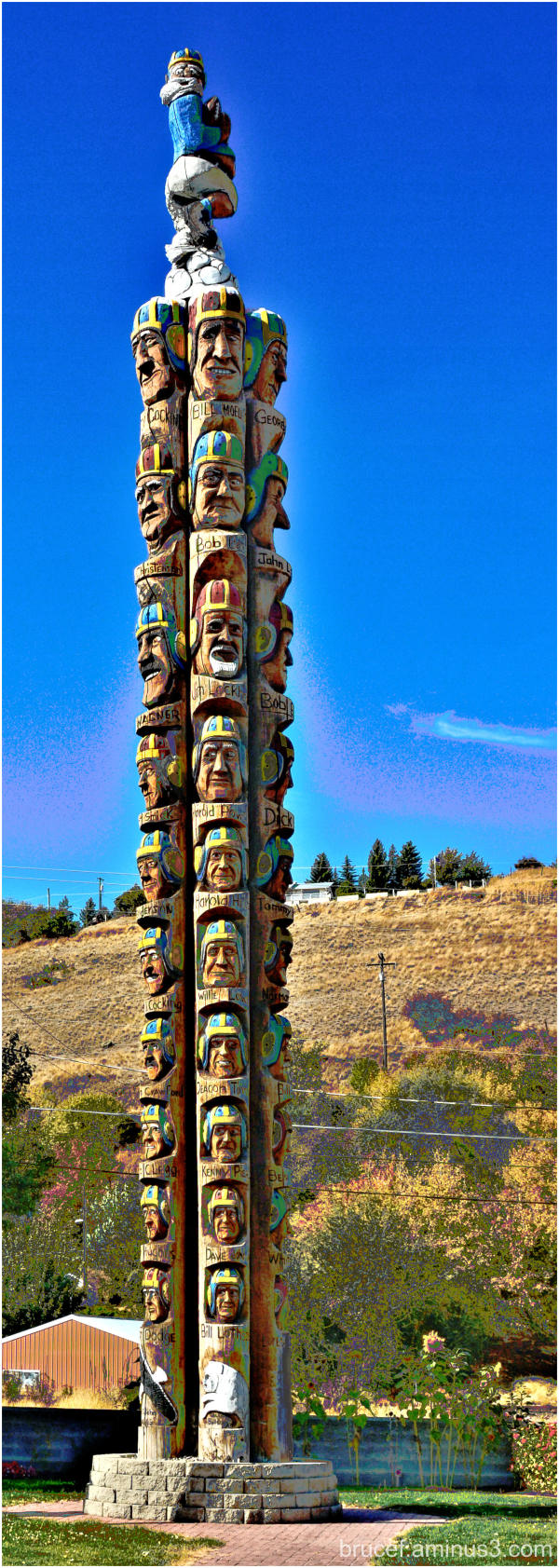 Codger Pole Colfax, Washington