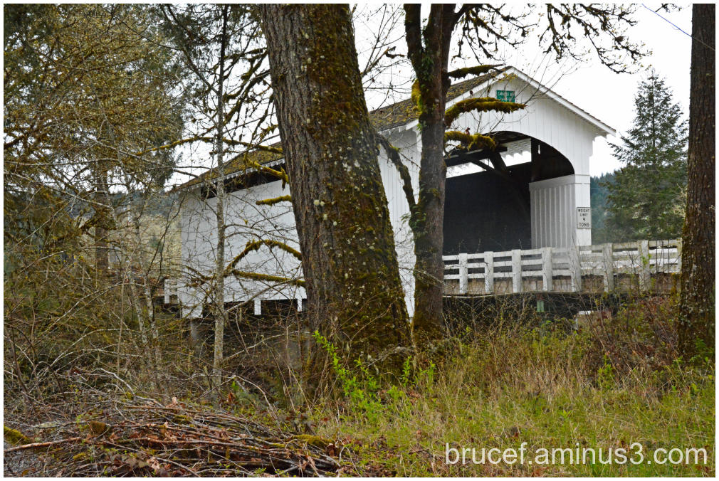 Earnest Covered Bridge Oregon