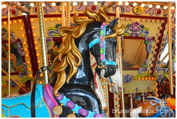 Black Carousel Horse - Salem Oregon