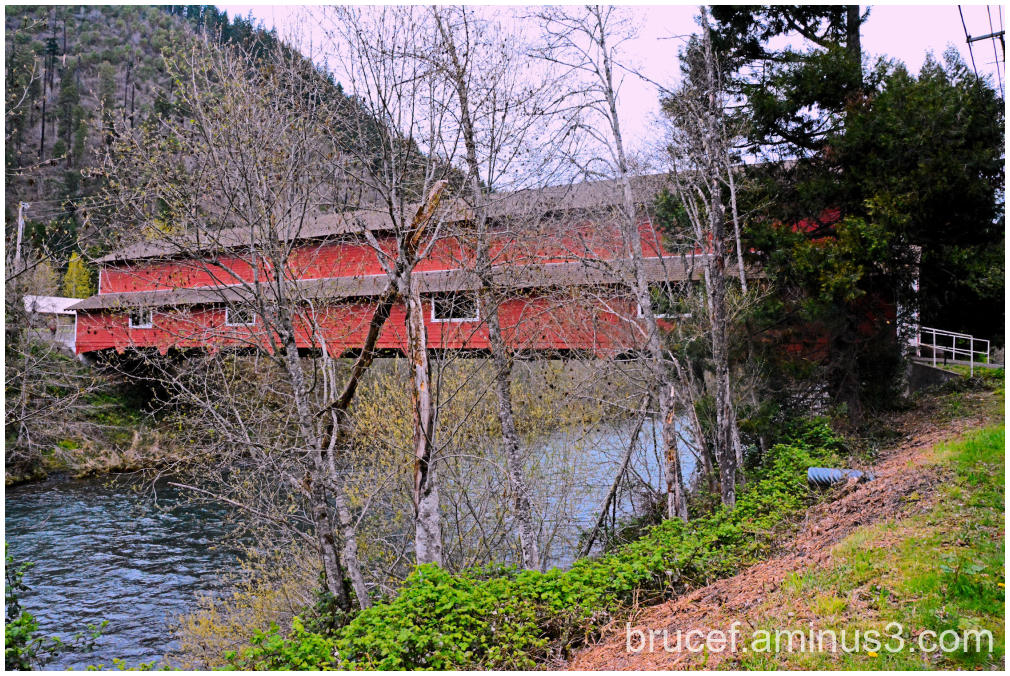Office Covered Bridge Oregon