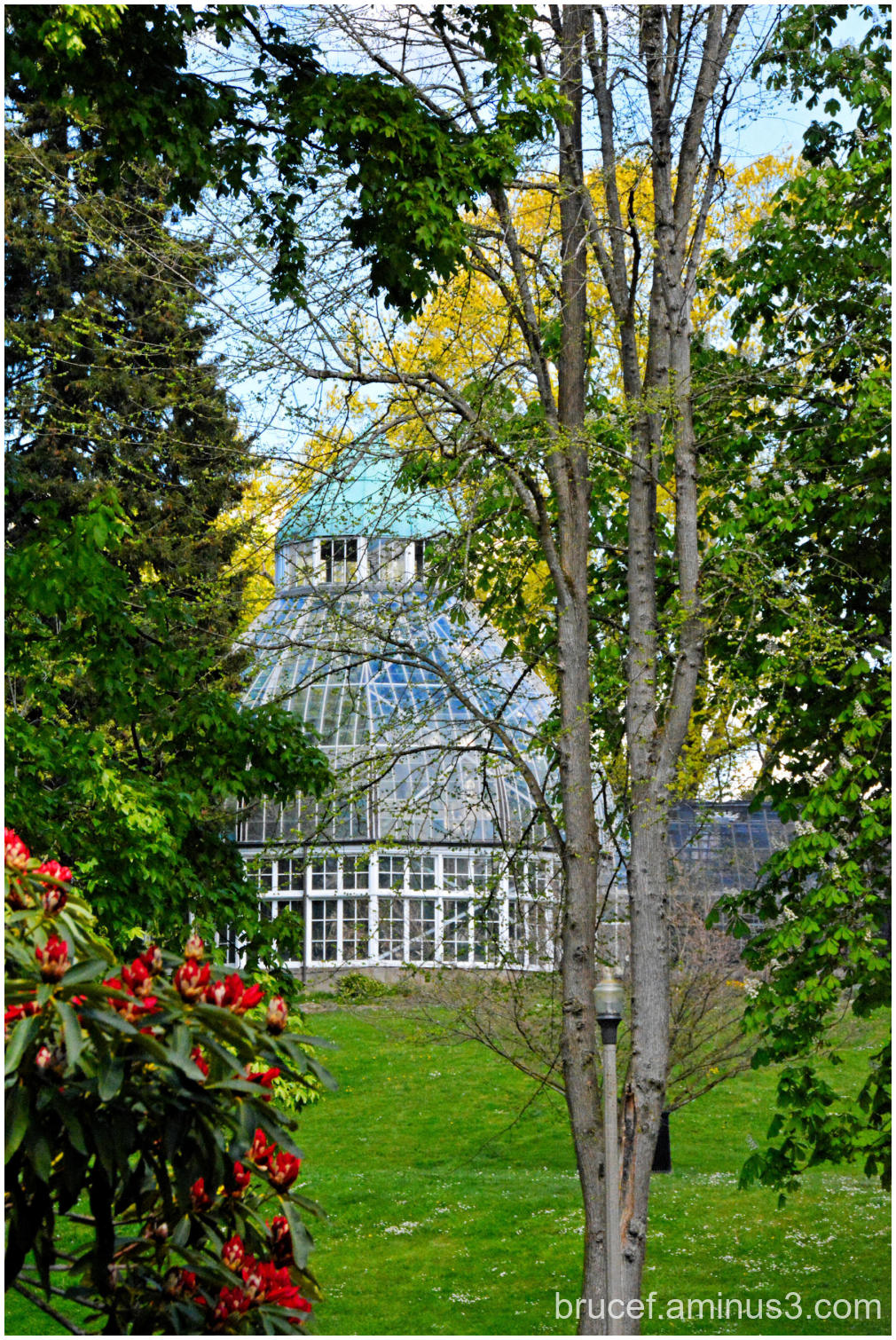 Wright Park Conservatory