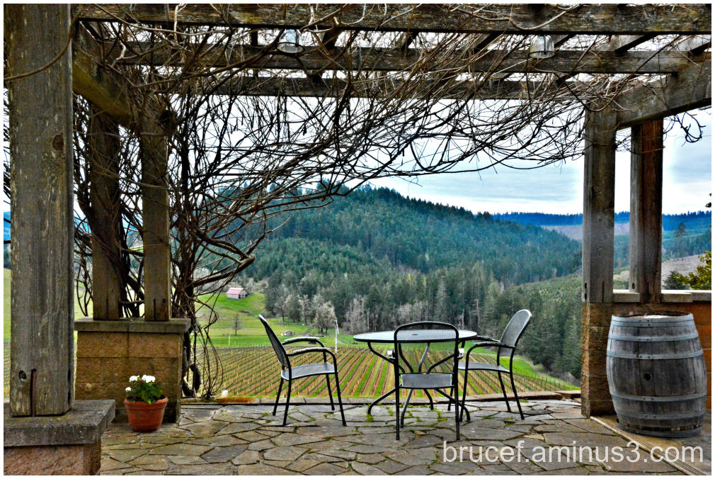 Oregon Winery in the Spring