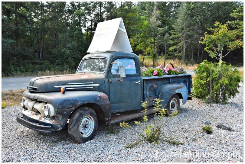 Blue Ford Truck