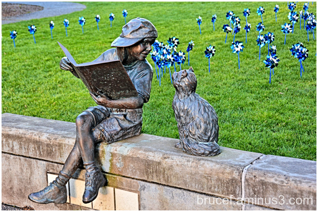 Boy and Cat Reading Longview WA