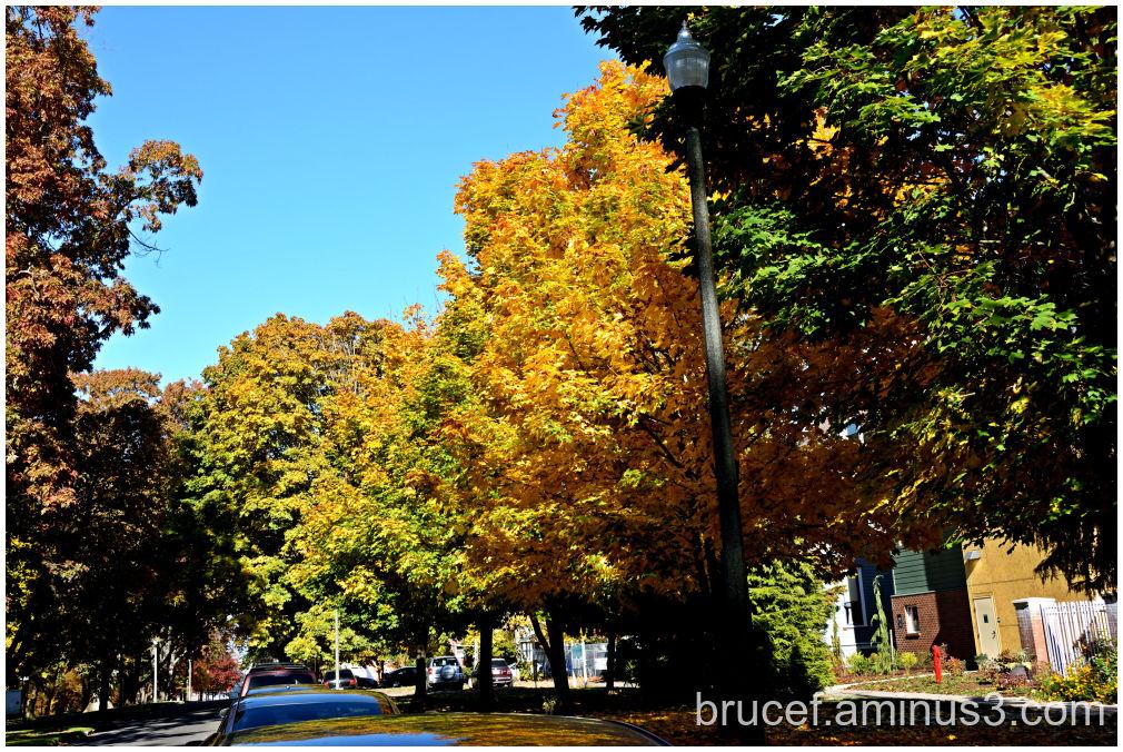 A beautiful City Street in Tacoma Washington