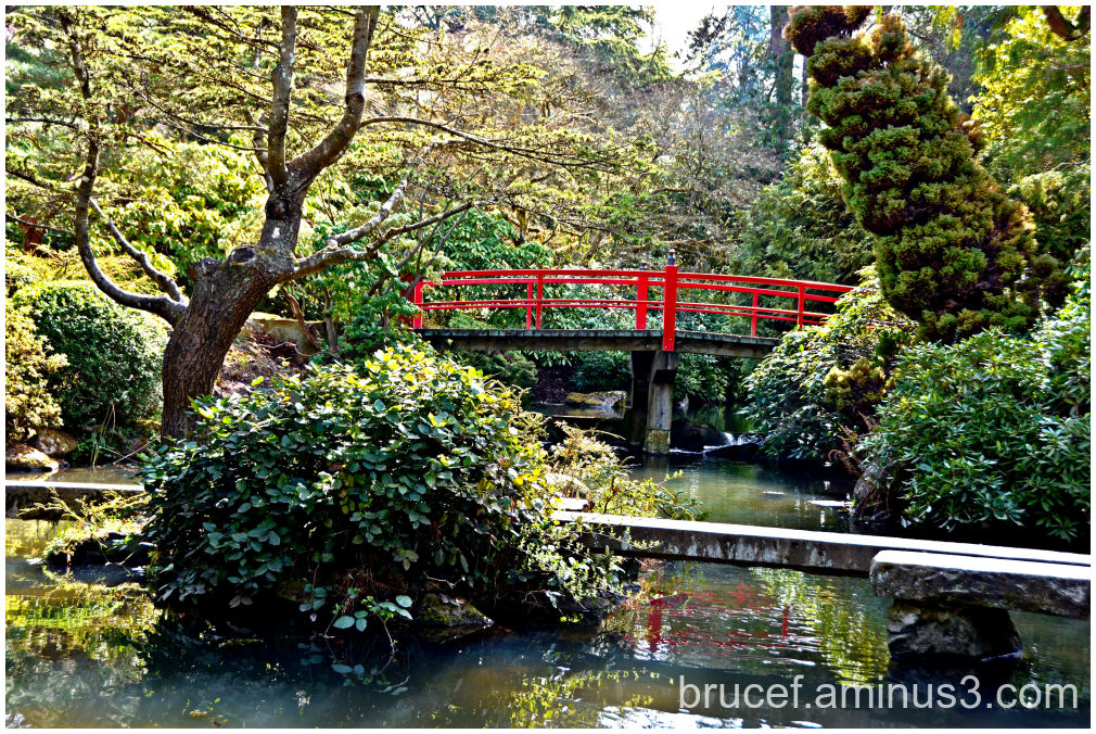 Kubota Garden and the Red Bridge