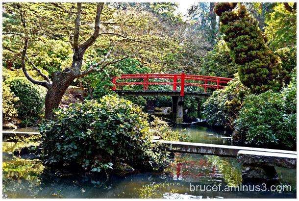 Kubota Garden and the Red Bridge