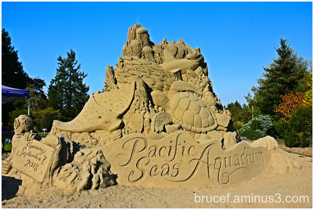 Now this is a sand castle