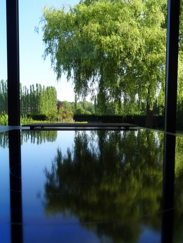 Reflection variety 3/3