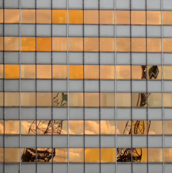 Scaldis reflection