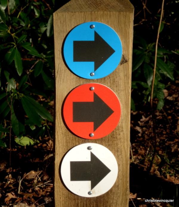 Thou shalt not go left