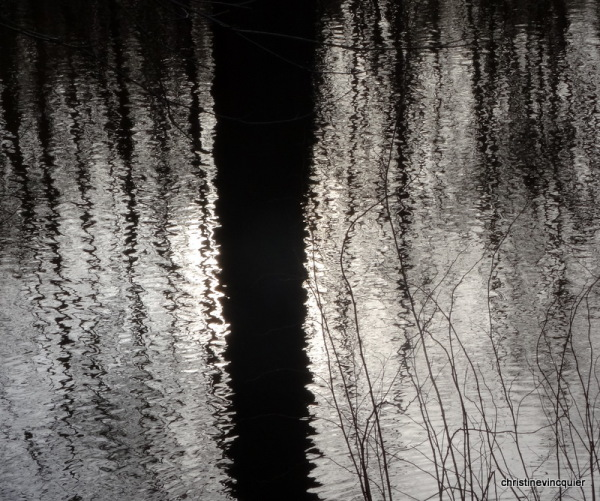 winter reflections 9
