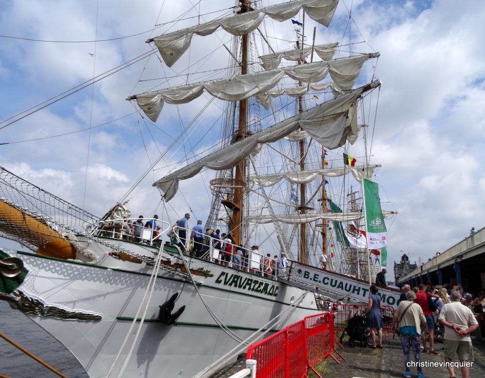 tall ships race antwerp 5