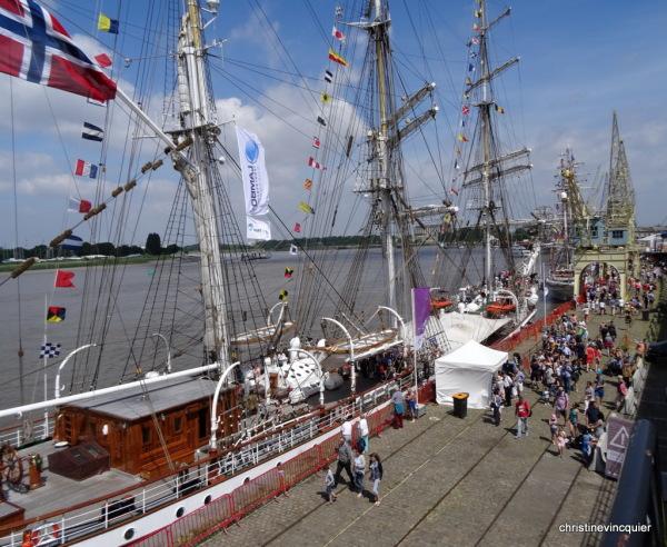 tall ships race antwerp 13