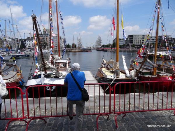 tall ships race antwerp 15