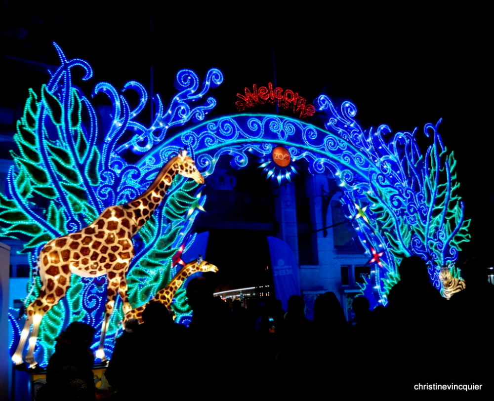 China Light Festival 2