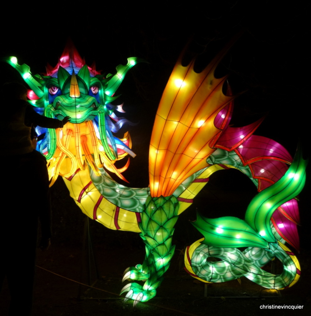 China Light Festival 3