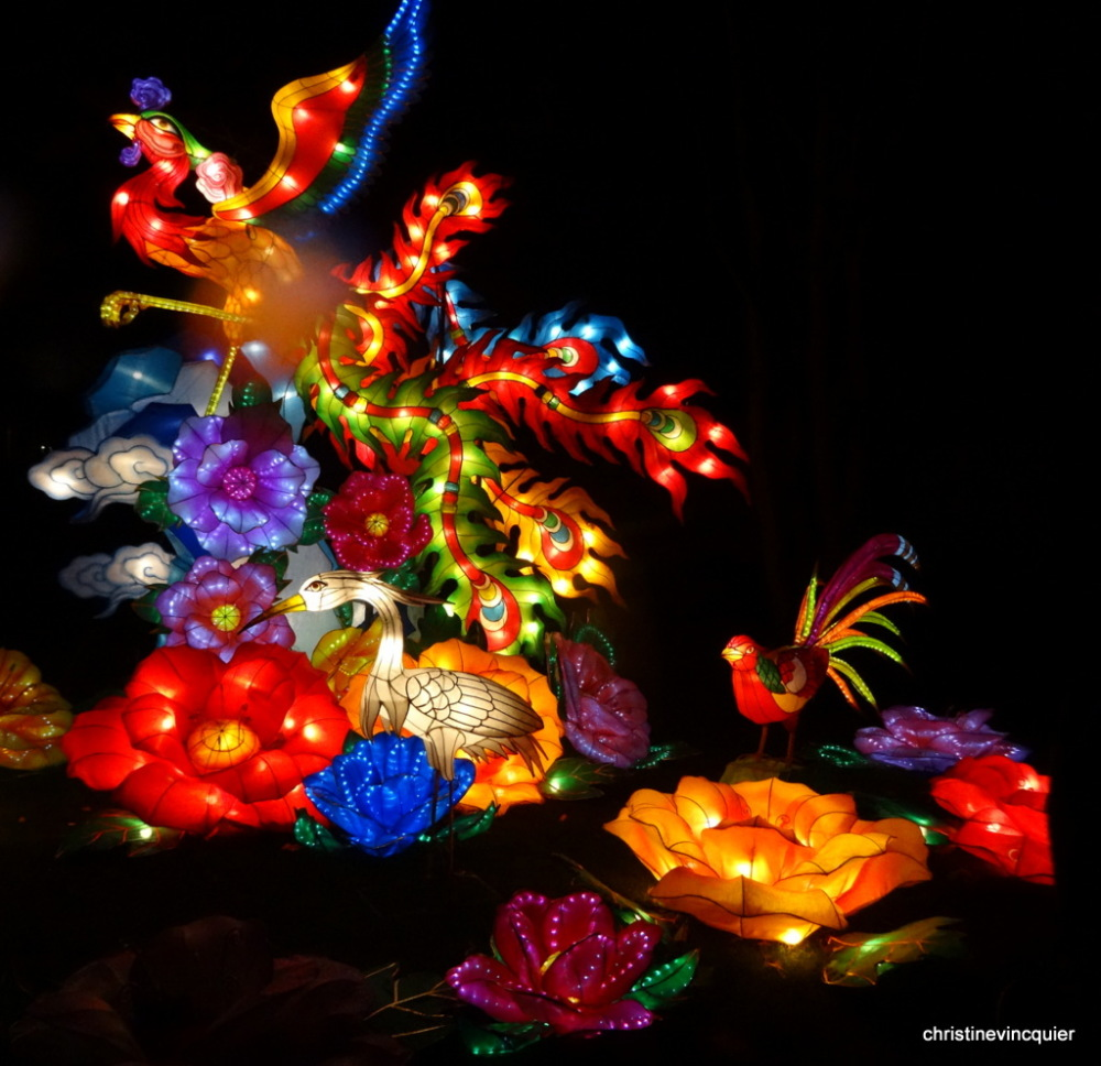 China Light Festival 5
