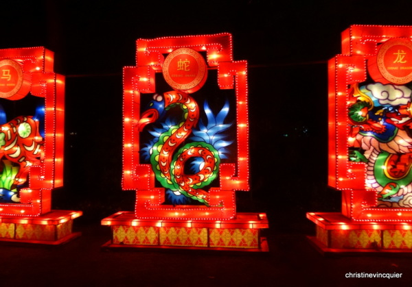 China Light Festival 6