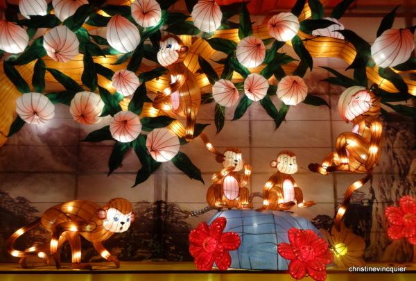 China Light Festival 7