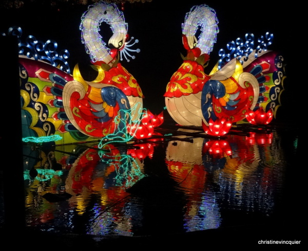 China Light Festival 9