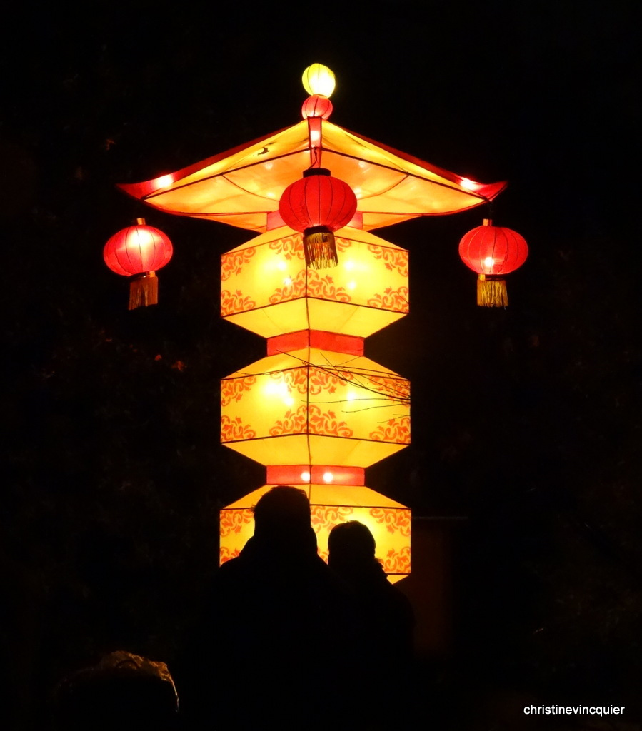 China Light Festival 11