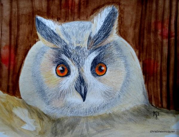 owlish look 2
