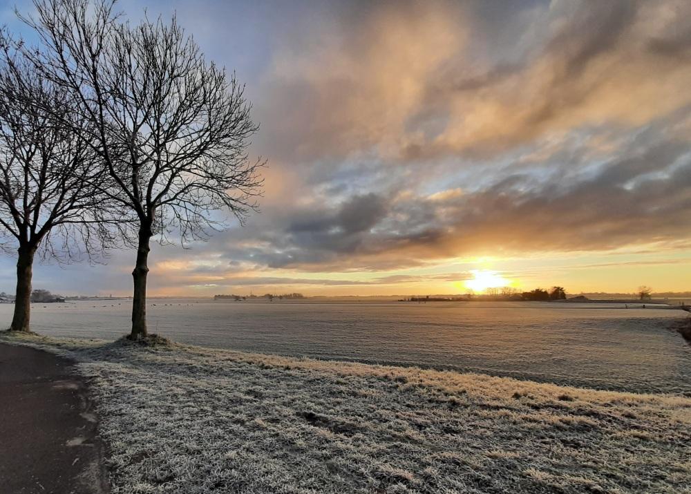 Winter morning 5