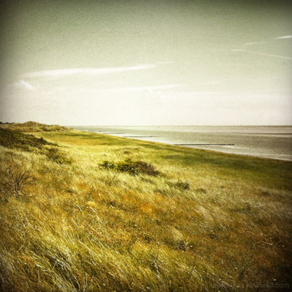 kust coast waddenzee eiland