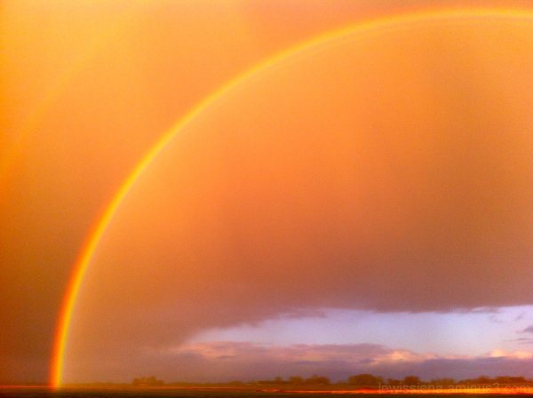regenboog rainbow