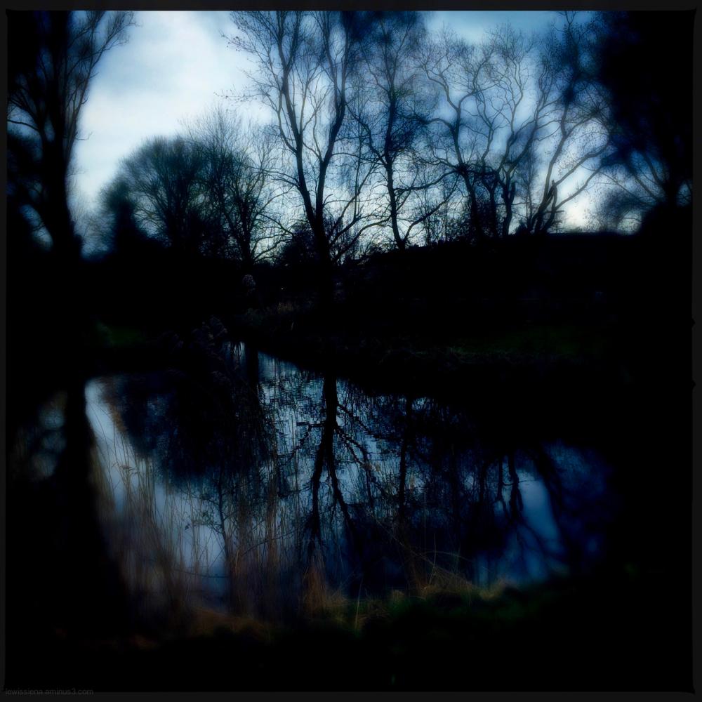 park pond vijver