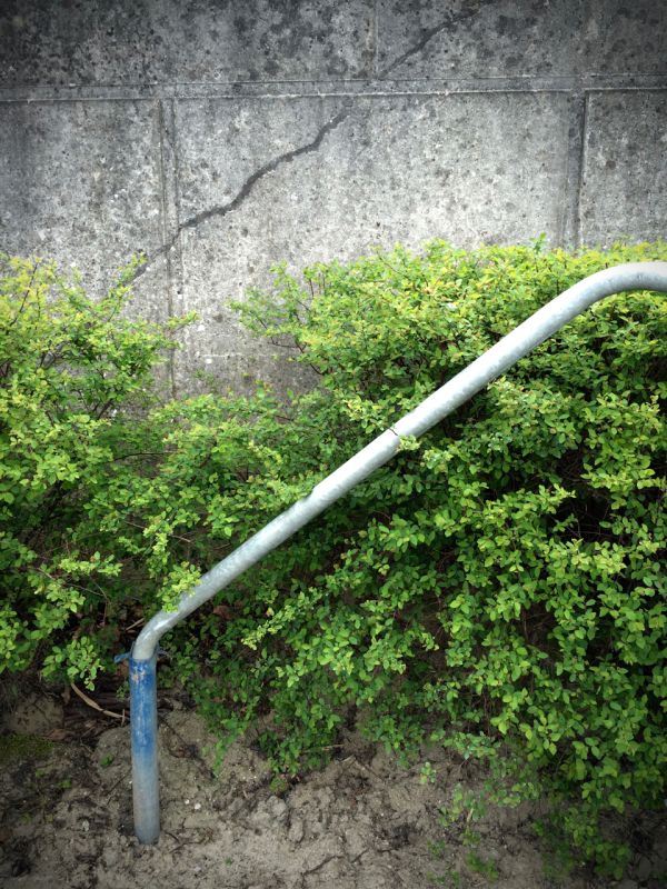 railing trail