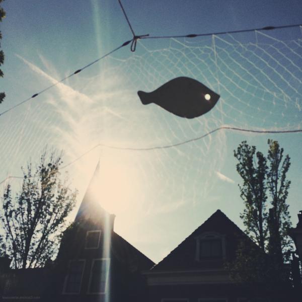 fish net street