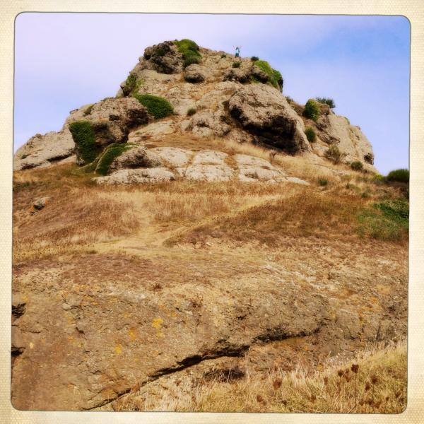 white rock Jersey