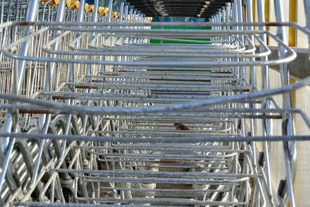 huismus moineau sparrow shopping trolleys