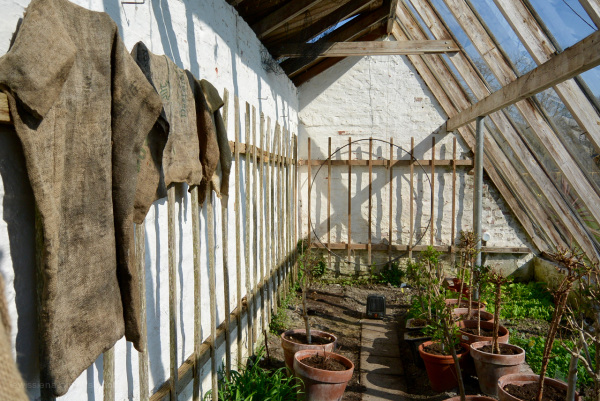 dekema State jelsum greenhouse kas burlap