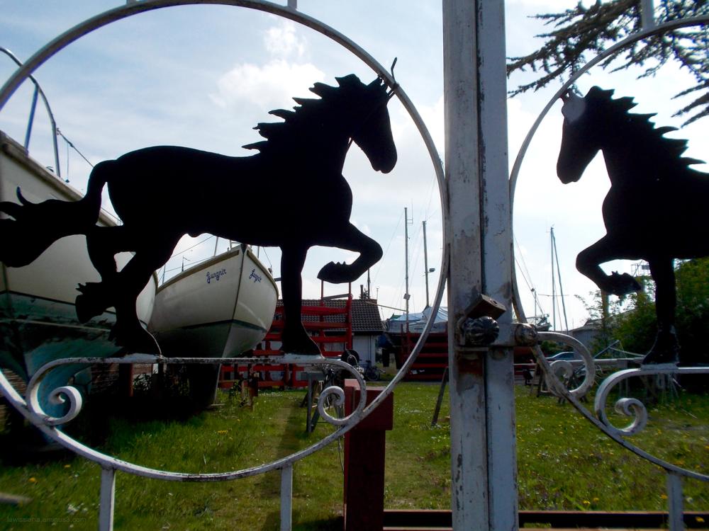 fence horse hek