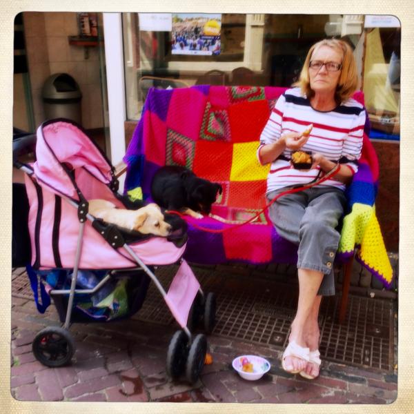 lady dogs lunch kibbeling honden gehaakt kleedje