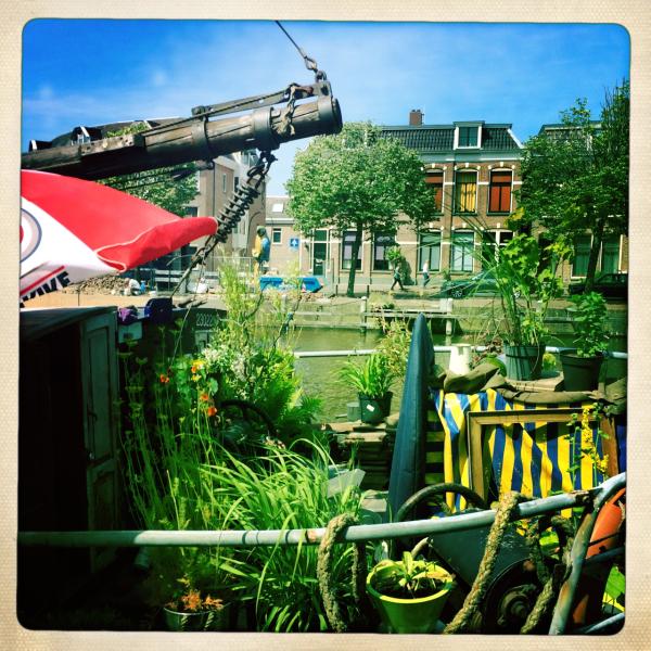 ship garden